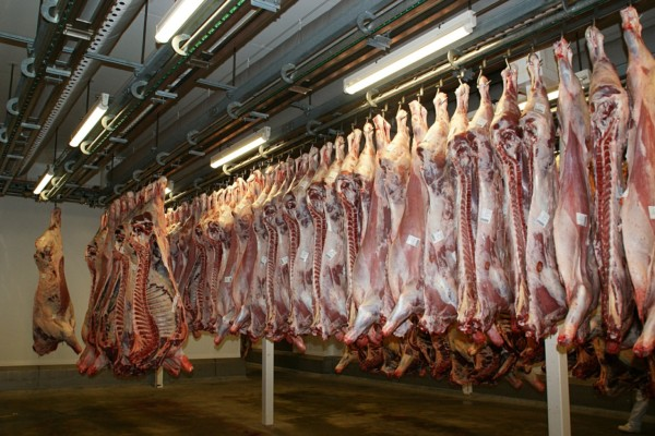 meat-640721_1280