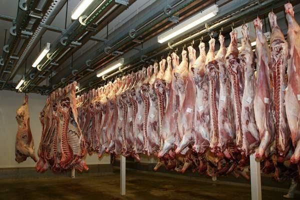 meat-640721_min